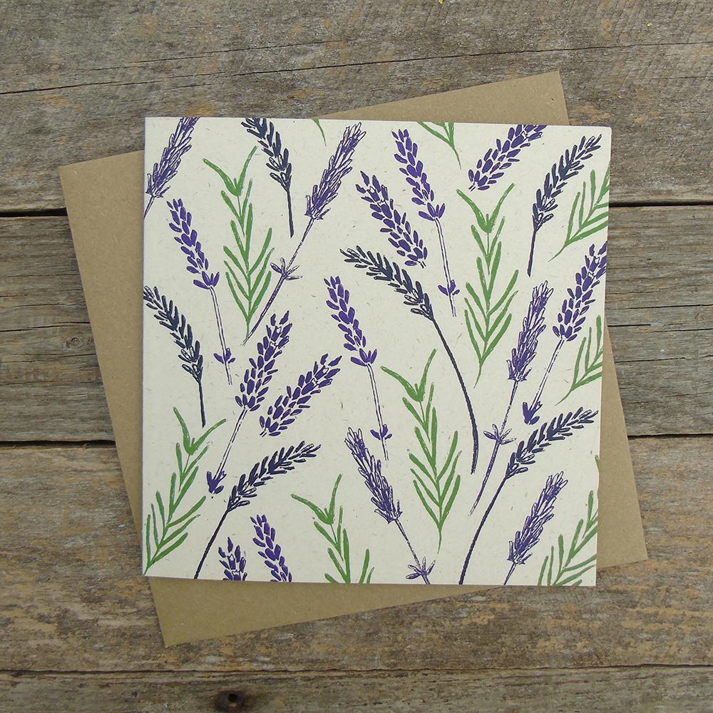 LBO4 Lavender web