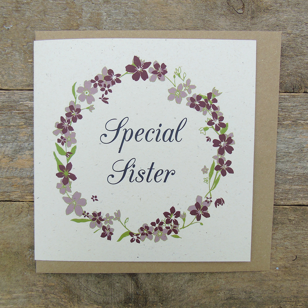 AA25 Special sister card web