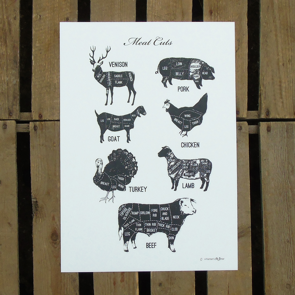 A3 Meat Cuts Print web