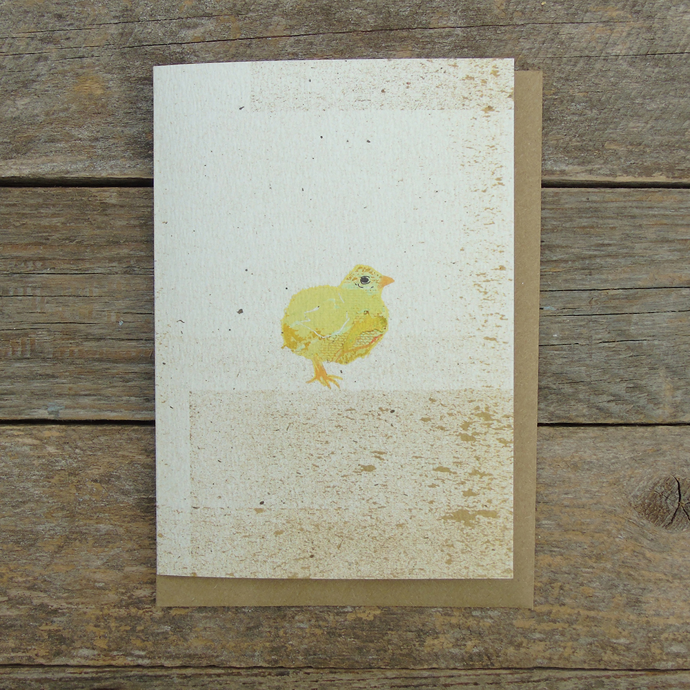 SP12 Chick Card web