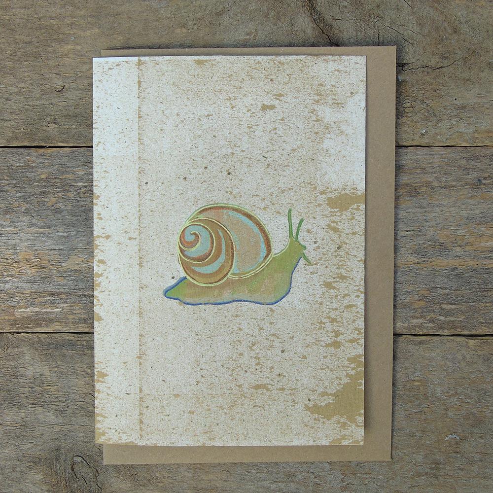 SP15 speckled Snail card web