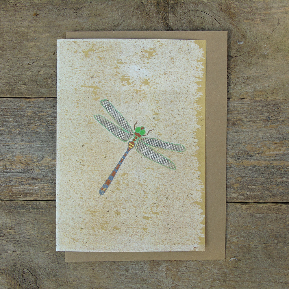 SP17 speckled Dragonfly card web