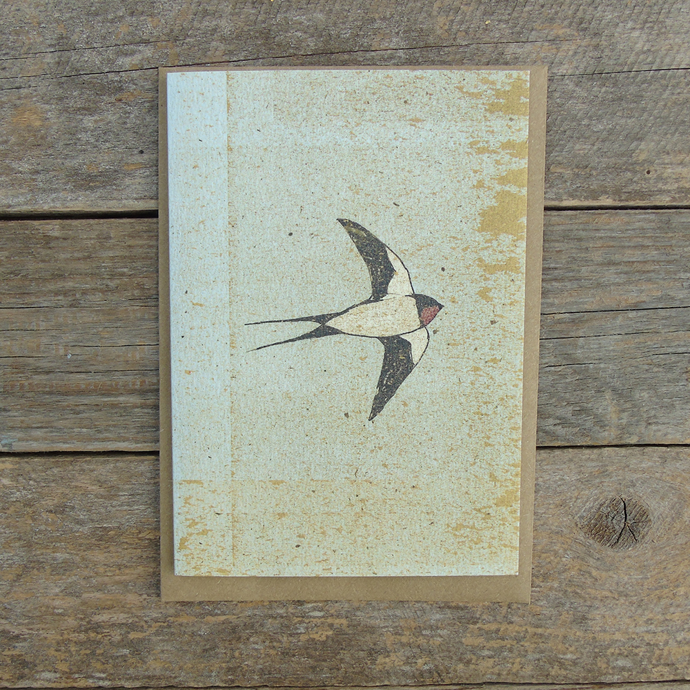 SP20 speckled Swallow card web