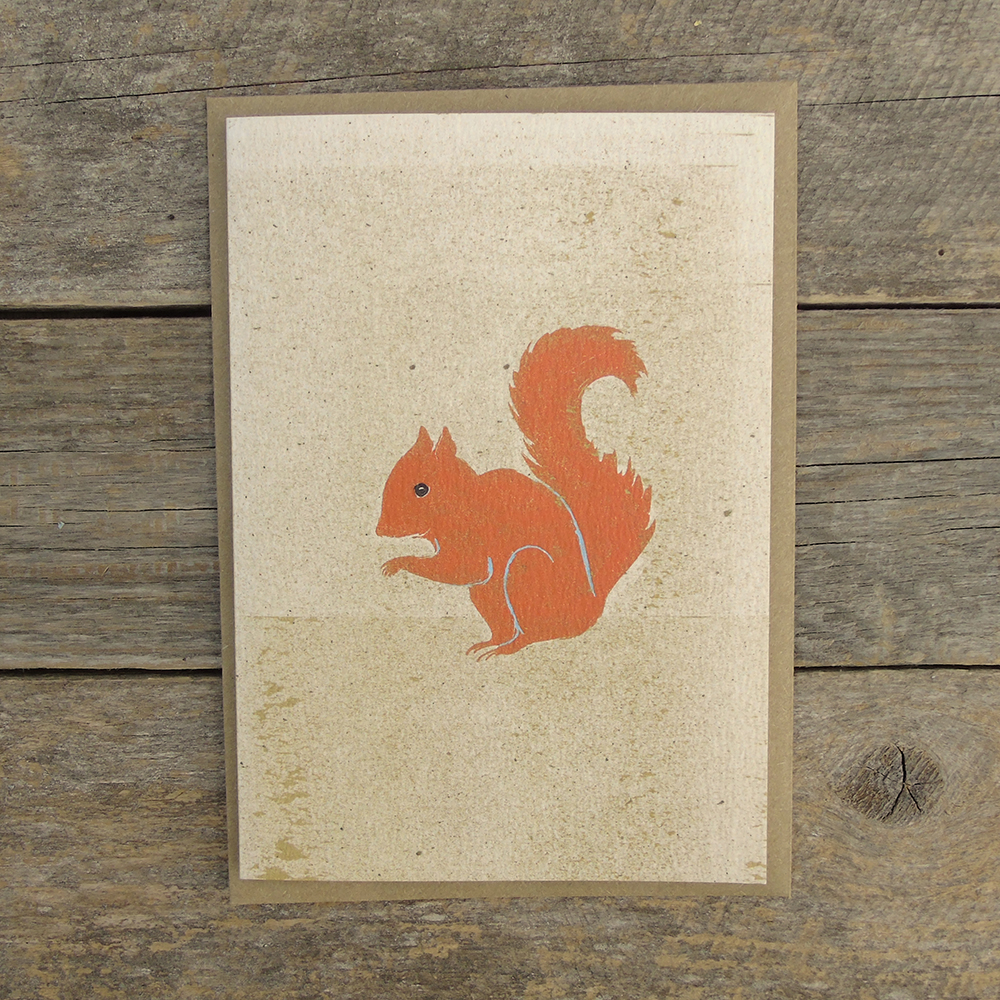 SP28 speckled squirrel card web