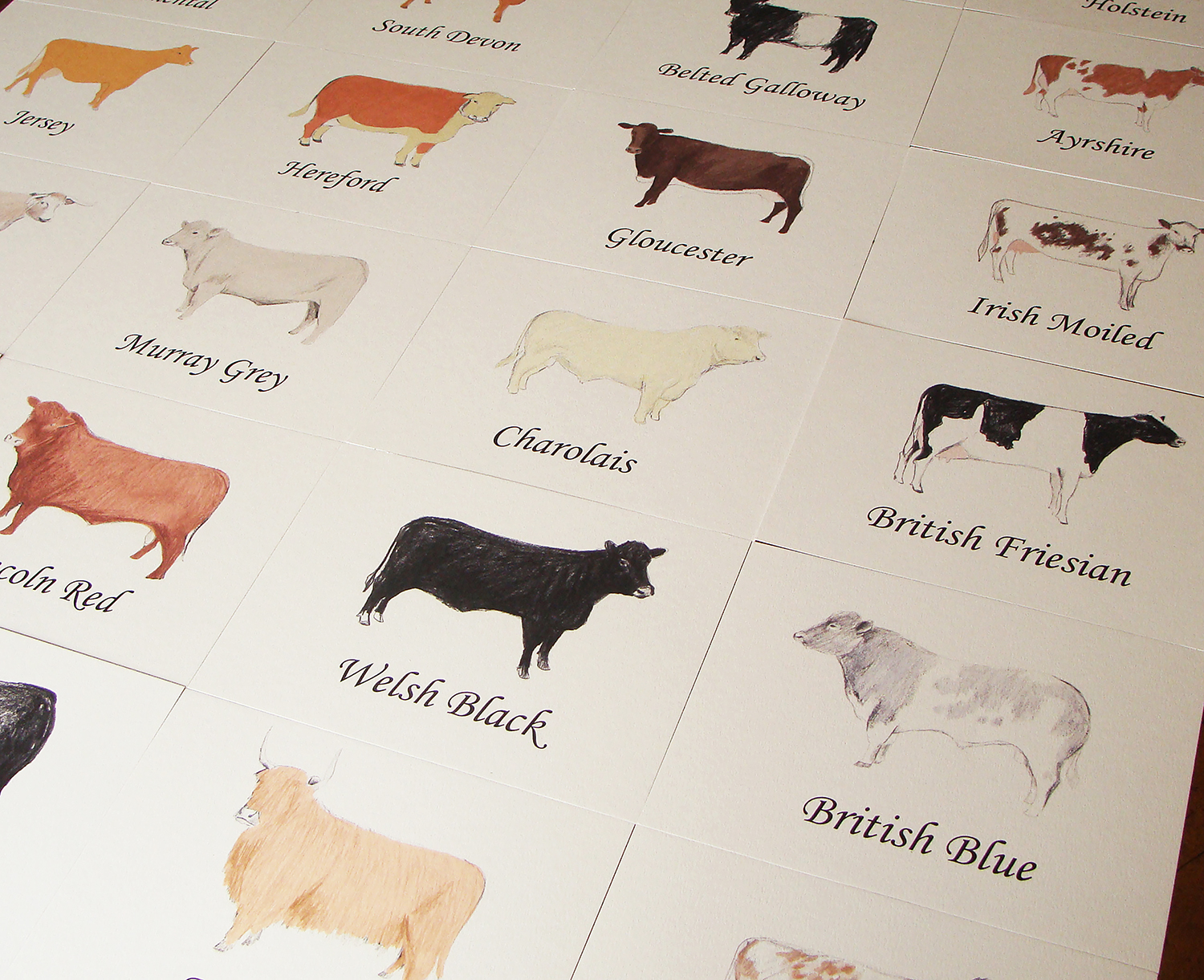 cow table names web