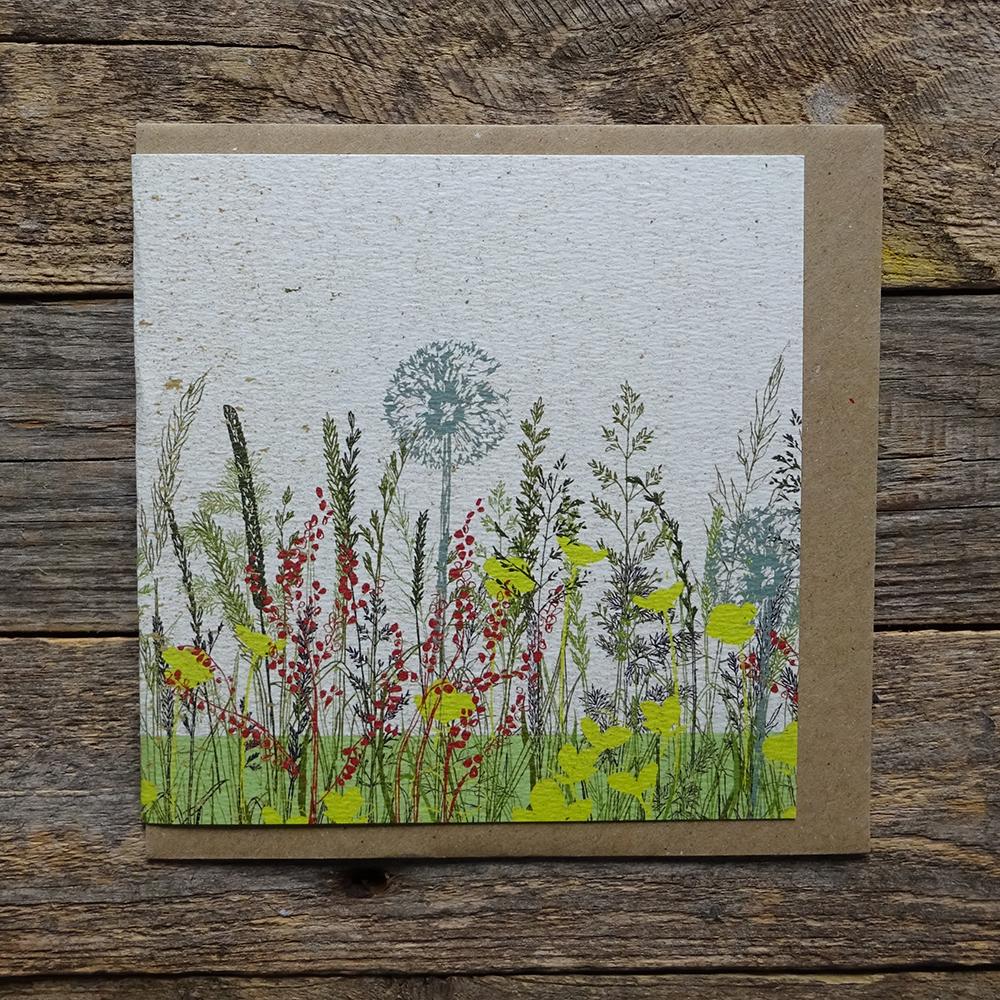 MDO1 Buttercup meadow card web