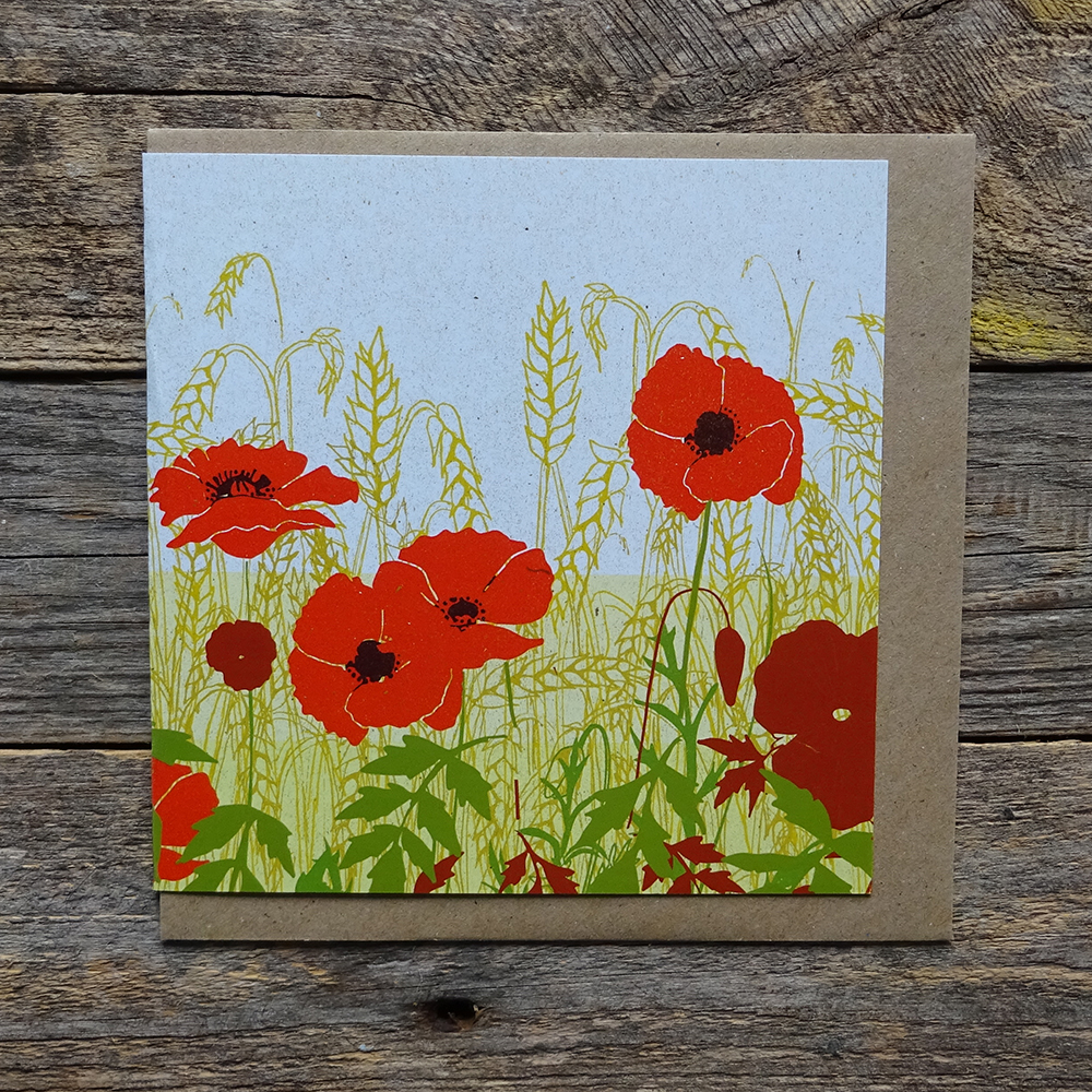 MDO5 Poppy Meadow web