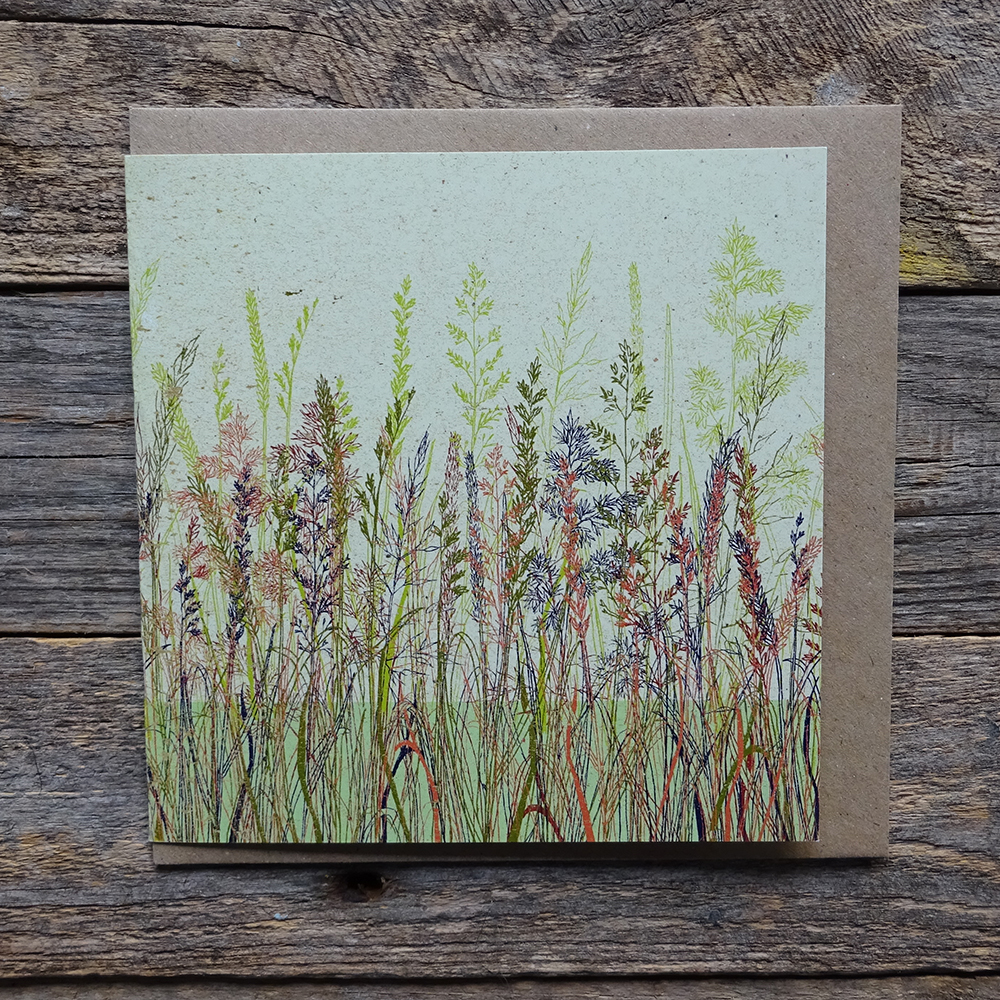 MDO6 grasses meadow web